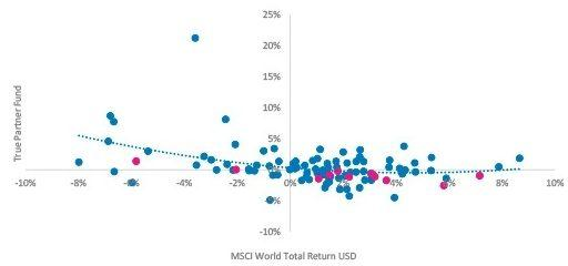 True Partner Fund vs. MSCI World Total Return USD – Monthly Returns, 2019 Highlighted
