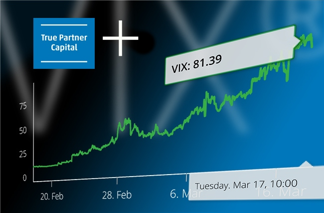 True Partner profitable while MSCI is down and VIX at +81